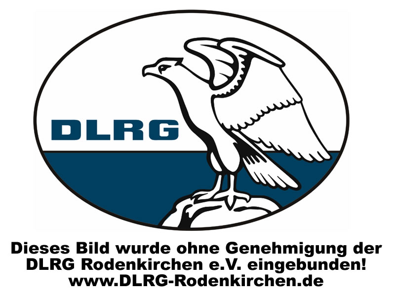 DLRG Summer Party 2001